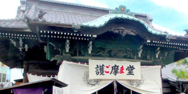 Sentaikoujin Shunkitaisai